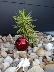 Red 150mm Stainless Steel Ball